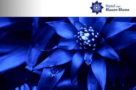 Hotel zur Blauen Blume im Fulldome-Theater