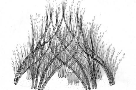 Weidenpavillon Apolda